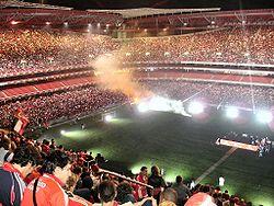250px-estadio_da_luz_2005_3